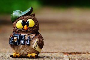 owl figurine with hat, camera, newspaper and binoculars